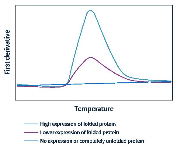 Andromeda Expression Screening Graph